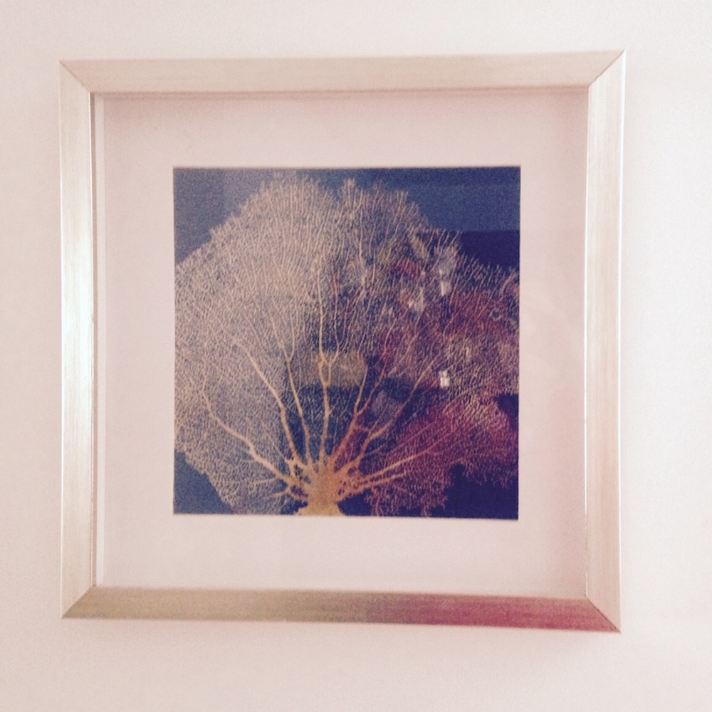 Leaf Coral Print With White Frame